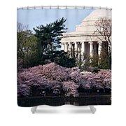 Cherry Blossoms Jefferson Memorial Shower Curtain