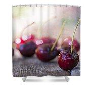 Cherry Delites Shower Curtain