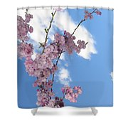 Cherry Floral Fountain Shower Curtain