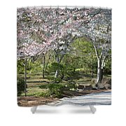 Cherry Lane Series  Picture A Shower Curtain