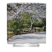 Cherry Lane Series  Picture G Shower Curtain