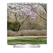 Cherry Lane Series  Picture I Shower Curtain