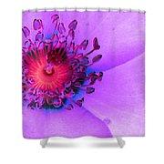 Cherry Pie Rose - Photopower 2825 Shower Curtain