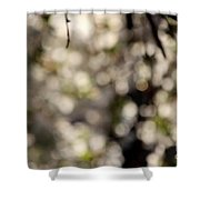 Cherry Tree Abstract Shower Curtain