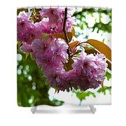 Cherry Tree Blossom Shower Curtain