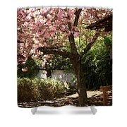 Cherry Tree In Bloom Shower Curtain
