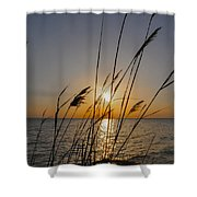 Chesapeak Bay At Sunrise Shower Curtain