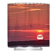 Chesapeake Sunset 1 Shower Curtain