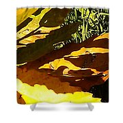 Chestnut Abstract Shower Curtain