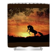 Chestnut Sunset Shower Curtain