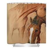 Cheyene Country Shower Curtain