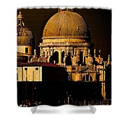 Chiaroscuro Venice Shower Curtain