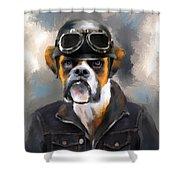 Chic Boxer Aviator Shower Curtain by Jai Johnson
