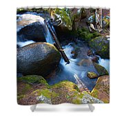 Chicago Creek #3 Shower Curtain