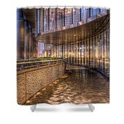 Chicago Curves Shower Curtain