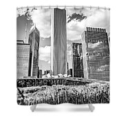 Chicago Skyline Lurie Garden Black And White Picture Shower Curtain