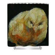 Chick 02 Shower Curtain