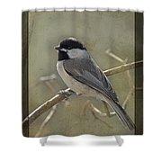 Chickadee Early Bird II Shower Curtain