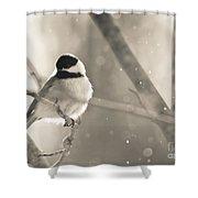 Chickadee Sparkles Shower Curtain
