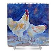 Chicken Duo Shower Curtain