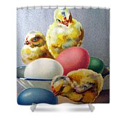 Chicks And Eggs Shower Curtain