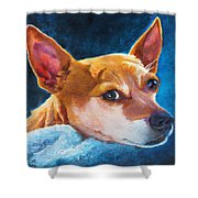 Chihuahua Baby Shower Curtain