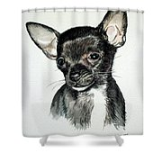 Chihuahua Black 2 Shower Curtain
