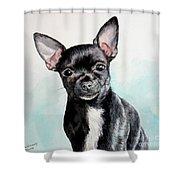 Chihuahua Black Shower Curtain