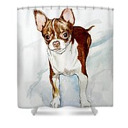 Chihuahua White Chocolate Color. Shower Curtain