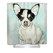 Chihuahua White With Black Spots Shower Curtain