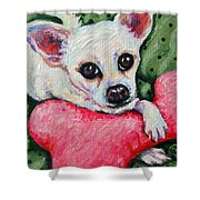 Chihuahua Who Came To Visit Shower Curtain