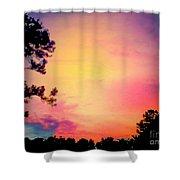 Chimerical Dream Shower Curtain