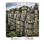 Chimney Tops Shower Curtain