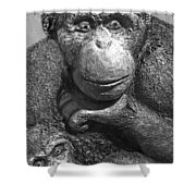 Chimpanzee Carving Shower Curtain