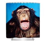 Chimpanzee Portrait Shower Curtain