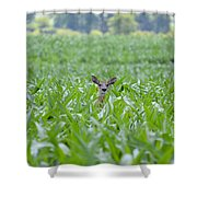 Chin High By The 4th 7395 Shower Curtain