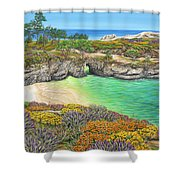 China Cove Paradise Shower Curtain