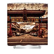 China Town Victoria Shower Curtain