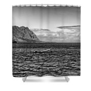 Chinaman's Hat Island From A Different Angle Shower Curtain