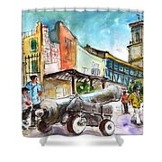Chinchilla De Monte Aragon 03 Shower Curtain