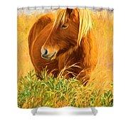 Chincoteague Pony Profile Shower Curtain