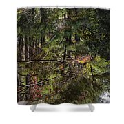 Chincoteague Reflection Shower Curtain