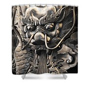 Chinese Art Shower Curtain