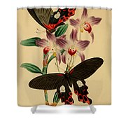 Chinese Butterflies Shower Curtain by Philip Ralley
