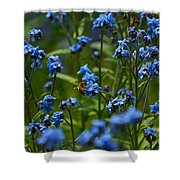 Chinese Forget Me Nots And Honey Bee Shower Curtain