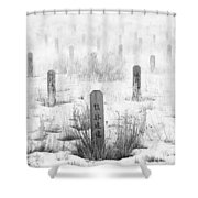 Chinese Grave Markers Shower Curtain