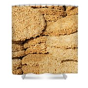 Chinese Rice Cakes Shower Curtain