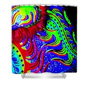 Chinese Tapestry Abstract Shower Curtain
