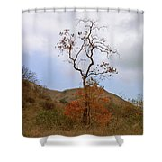 Chino Hills Tree Shower Curtain