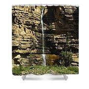 Chipetal Falls Shower Curtain